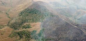 Бразилия изпраща армията да се бори с големите пожари в Амазония (ВИДЕО)