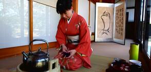 """""""Без багаж"""" разказват за чаената церемония в Япония"""