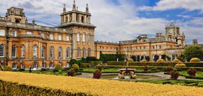 Откраднаха 18-каратова златна тоалетна от дворец във Великобритания (ВИДЕО+СНИМКИ)