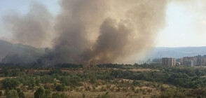 "Пожар пламна между столичните квартали ""Младост"" и ""Горубляне"" (ВИДЕО+СНИМКИ)"