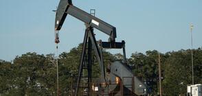 Цените на петрола - най-високи от 4 месеца насам