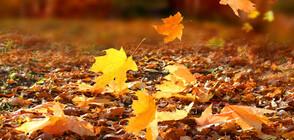 Задава се есенно захлаждане