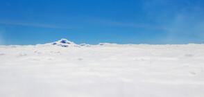 Озоновата дупка над Антарктида е най-малка от 30 години насам