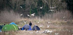 Франция евакуира 900 мигранти от лагер близо до Ламанша