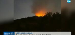 Пожар на метри от къщи в Асеновград (ВИДЕО)