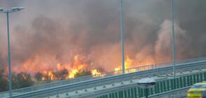 Потушен е пожарът до летище София
