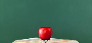 ПРОВЕРКИ ЗА КАЧЕСТВОТО НА ХРАНИТЕ: Инспектори на БАБХ влизат в училищата и детските градини