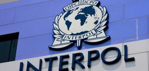 Интерпол залови предполагаеми терористи при международна операция