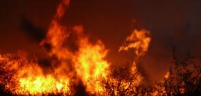 Газова експлозия в Иран взе жертви