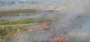 Дежурни екипи ще следят за палене на стърнища