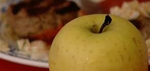 Директори сами да избират фирмите, които доставят безплатните плодове и мляко на учениците