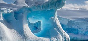 Започва най-голямата арктическа експедиция