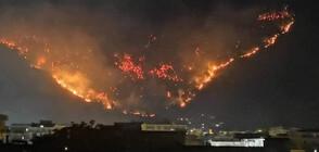 Голям пожар в Южна Италия (ВИДЕО+СНИМКИ)