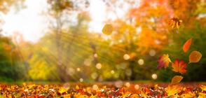 Очаква ни топла есен, живакът скача до 30 градуса през октомври