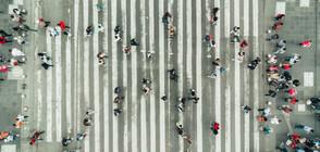 140 души пълзяха в Ню Йорк (СНИМКА)