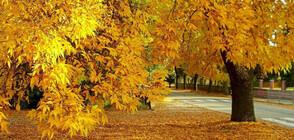 Астрономическата есен идва със слънце