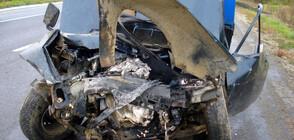 ФАТАЛНА ОТСЕЧКА: Пореден загинал след удар в животно на пътя
