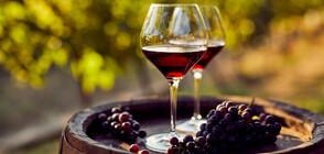 ПРОВЕРКА НА NOVA: Ще поскъпне ли българското вино?