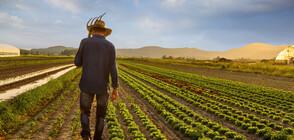 Земеделците с редица искания към държавата