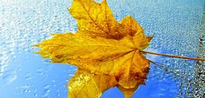 Истинската есен настъпва със силен вятър и валежи