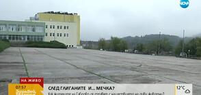 Сигнал за мечка в двора на училище в Габрово