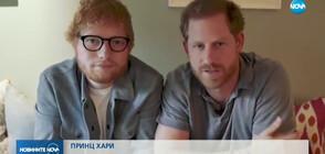 Принц Хари и Ед Шийрън със забавно видео в Деня на хората с ментални увреждания