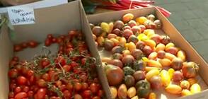 Нов постоянен фермерски пазар в София (ВИДЕО+СНИМКИ)
