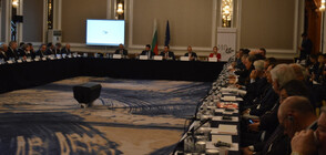 Караниколов: Новата концепция за развитие на индустриалните зони ще повиши инвеститорския интерес към България