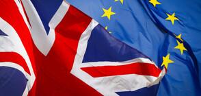 Британската телевизия пуска канал без новини за Brexit