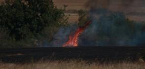 Над 3000 декара сухи треви и храсти са изгорели край монтанското село Славотин
