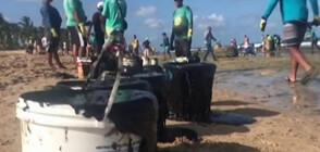 Петрол замърси известни плажове в Бразилия