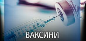 Първите безплатни противогрипни ваксини за възрастните хора пристигат следващата седмица