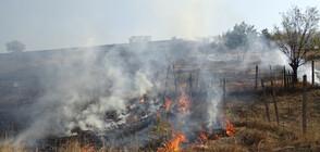 Треви и храсти горяха при пожар край Благоевград (ВИДЕО+СНИМКИ)