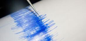 Земетресение от 5,6 по Рихтер удари южната част на Иран