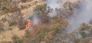 Пожарът над Чипровци е локализиран (ВИДЕО)