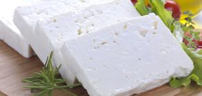 Ще подчинят ли имитациите на сирене българския вкус?