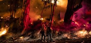 Тръмп заплаши да спре помощта за борбата с пожарите в Калифорния