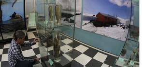 Уникални морски организми от Антарктида на изложба в София (ВИДЕО+СНИМКИ)