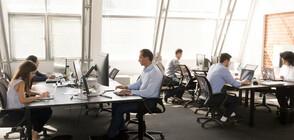 Проучване: Бизнесът плаща с 5% по-високи заплати тази година