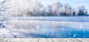 Обилни снеговалежи и рекордно ниски температури в САЩ (ВИДЕО+СНИМКИ)