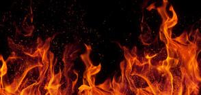 Голям пожар горя край Трявна (СНИМКИ)