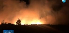 Голям пожар горя край Трявна (ВИДЕО+СНИМКИ)
