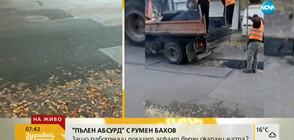 """""""ПЪЛЕН АБСУРД"""": Работници полагат асфалт върху окапали листа"""