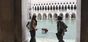 Приливът отново заля Венеция (ВИДЕО+СНИМКИ)