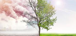 Може ли човечеството да се справи с климатичните промени?