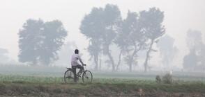 ЗАРАДИ МРЪСНИЯ ВЪЗДУХ: Бар в Делхи предлага... чист кислород (ВИДЕО+СНИМКИ)