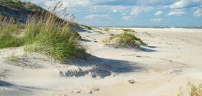 Тонове пясък се изсипаха по Източното крайбрежие на САЩ (СНИМКИ)