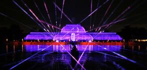 Спиращо дъха светлинно шоу в Кралската ботаническа градина (ВИДЕО+СНИМКИ)