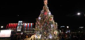 Светлините на коледната елха в София грейнаха (ВИДЕО+СНИМКИ)