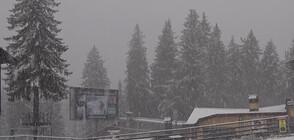 """КОД """"ЗИМА"""": Студ и сняг от утре"""